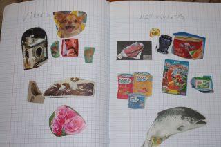 フランスの小学校って何を習うの? もう食物連鎖を学ぶ小学生一年生