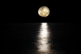 フランス語で寝る前におやすみなさい良い夢をと優しく語り掛けてみて