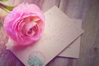 フランス語で結婚おめでとう書いてみる?お祝いメッセージ例文集!